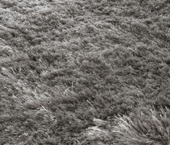 Miinu,Rugs,black-and-white,fur,grass,grass family,grassland,soil