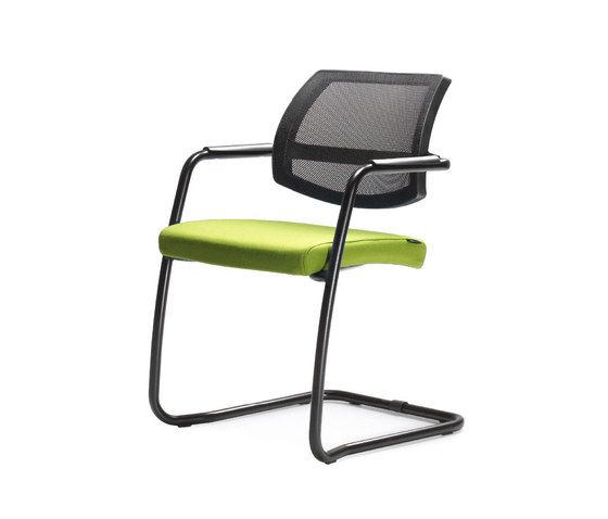 Quinti Sedute,Dining Chairs,armrest,chair,furniture
