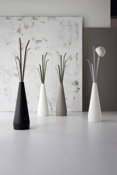 Bonaldo,Wardrobes,branch,design,floor,flowerpot,interior design,still life photography,vase,white
