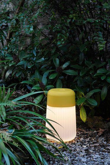 FontanaArte,Outdoor Lighting,botany,plant,yellow