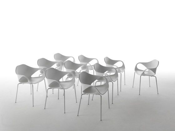 Giulio Marelli,Dining Chairs,chair,design,furniture,room,table,white