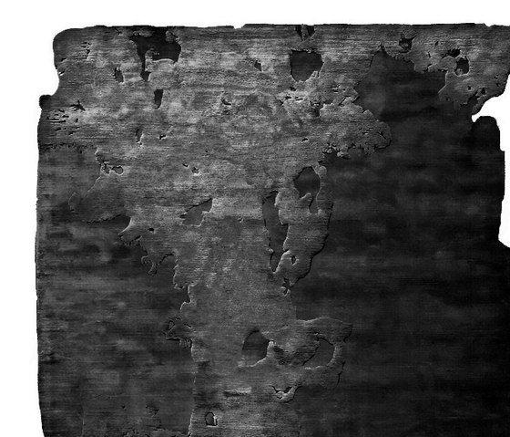 Henzel Studio,Rugs,black,black-and-white,canoe birch,tree,trunk