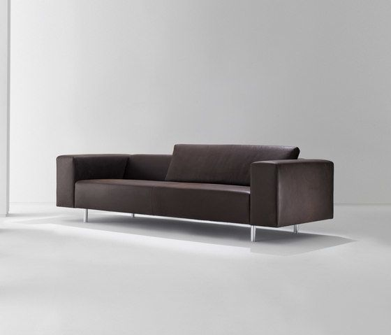 Laurameroni,Sofas,brown,comfort,couch,furniture,leather,line,room,sofa bed,studio couch