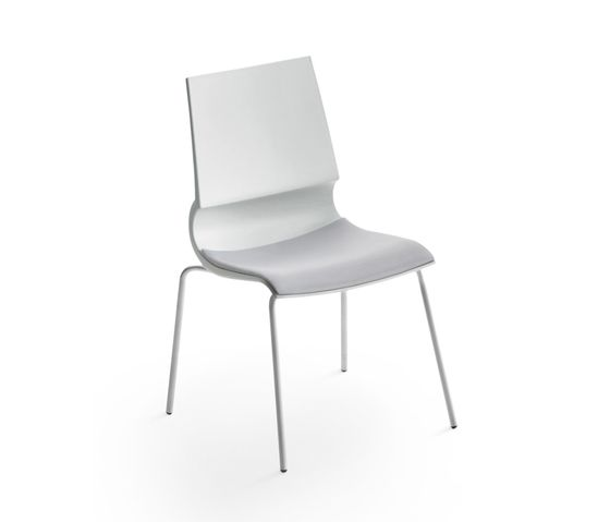 Maxdesign,Dining Chairs,chair,furniture