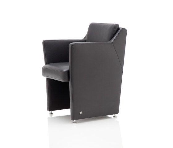 Rolf Benz,Lounge Chairs,chair,club chair,furniture
