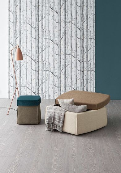 Bonaldo,Footstools,bed,beige,couch,floor,furniture,interior design,product,room,studio couch,table,tree,wall