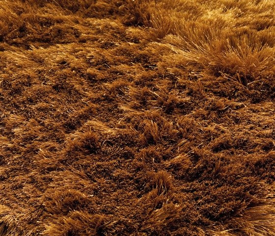 kymo,Rugs,brown,fur,grass,grass family,hay,plant,straw