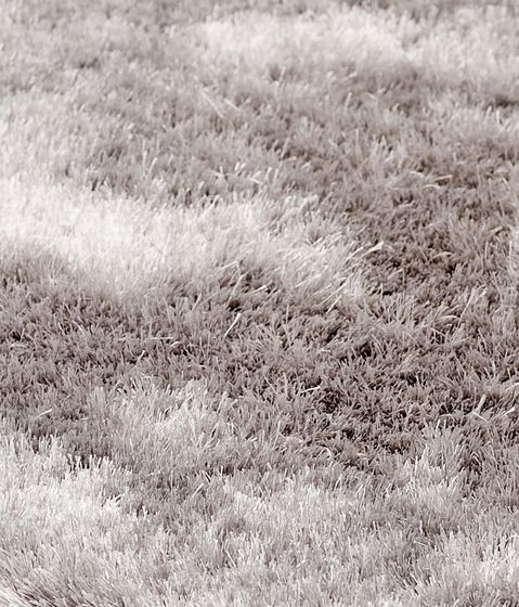 black-and-white,ecoregion,field,grass,grass family,grassland,monochrome,monochrome photography,plant,stock photography,white