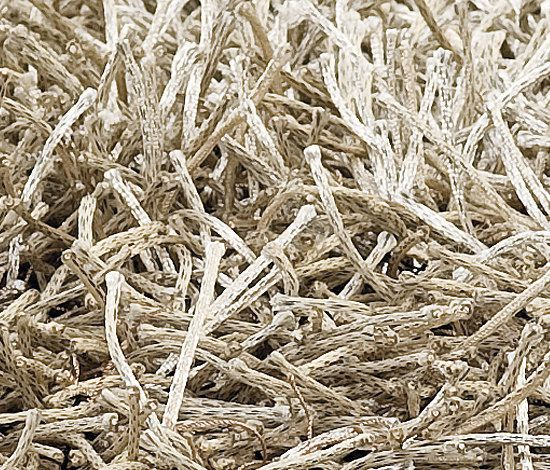 kymo,Rugs,grass,hay,plant,straw