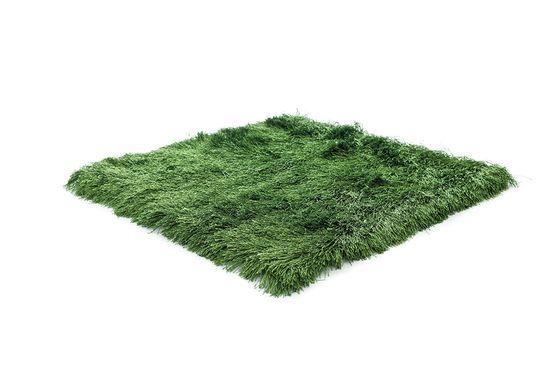 kymo,Rugs,fur,grass,green,plant