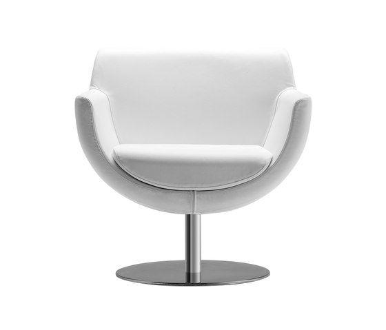 Tonon,Armchairs,chair,furniture