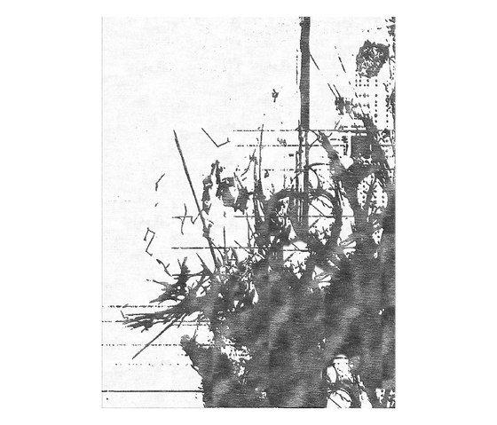 Illulian,Rugs,botany,branch,plant