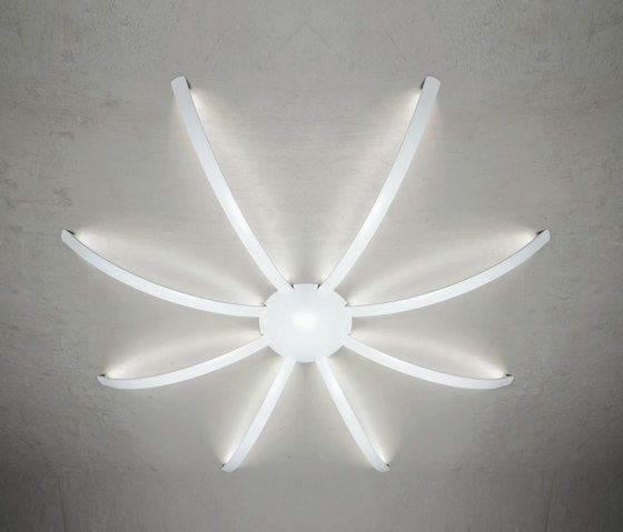 https://res.cloudinary.com/clippings/image/upload/t_big/dpr_auto,f_auto,w_auto/v2/product_bases/surfin-ceiling-wall-spider-8-arms-by-millelumen-millelumen-dieter-k-weis-clippings-5563742.jpg