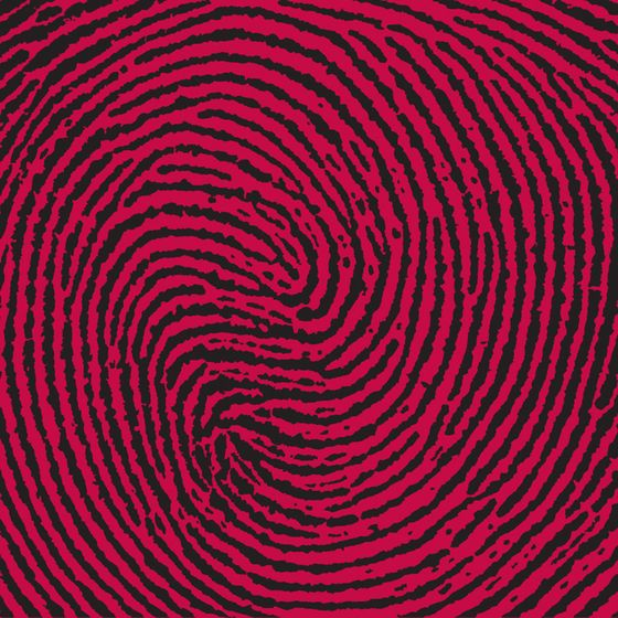Markanto,Rugs,line,pattern,spiral