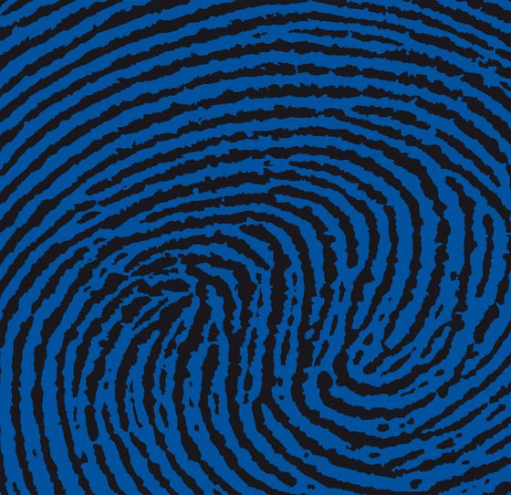 Markanto,Rugs,blue,design,electric blue,pattern,spiral