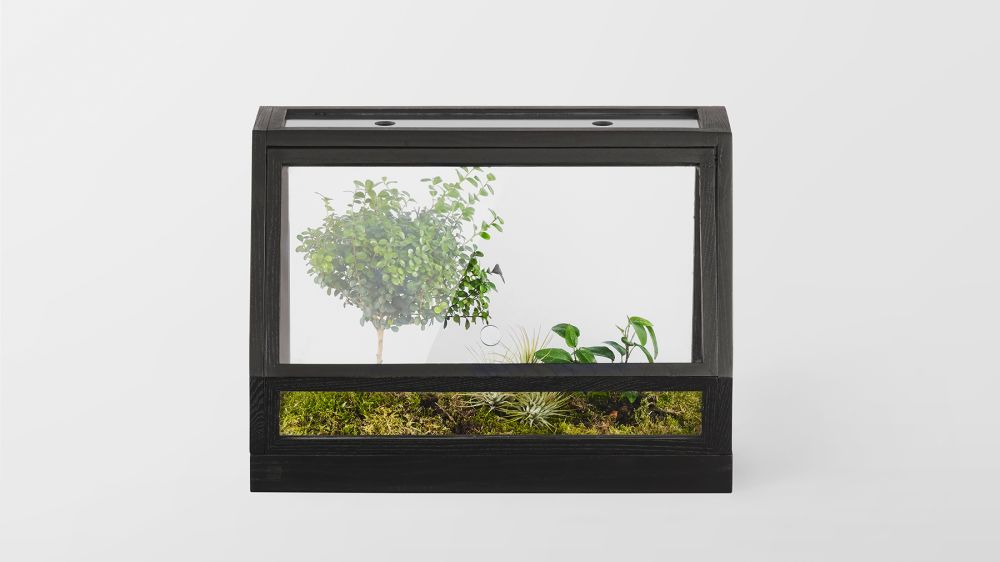 https://res.cloudinary.com/clippings/image/upload/t_big/dpr_auto,f_auto,w_auto/v2/products/greenhouse-mini-dark-grey-design-house-stockholm-atelier-2-clippings-9025761.jpg