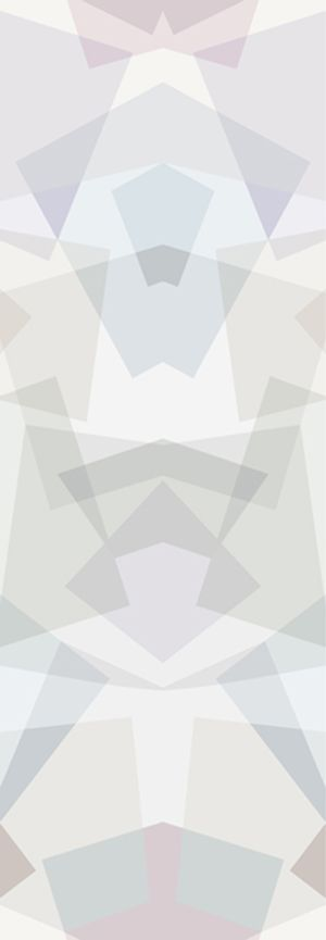 https://res.cloudinary.com/clippings/image/upload/t_big/dpr_auto,f_auto,w_auto/v2/products/kaleidoscope-wallpaper-grey-sonya-winner-studio-sonya-winner-studio-clippings-1495431.jpg