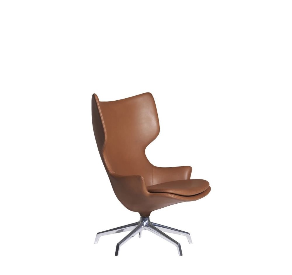 https://res.cloudinary.com/clippings/image/upload/t_big/dpr_auto,f_auto,w_auto/v2/products/lou-speak-armchair-tigri-havana-5500-aluminum-polished-mirror-driade-philippe-starck-clippings-10090491.jpg