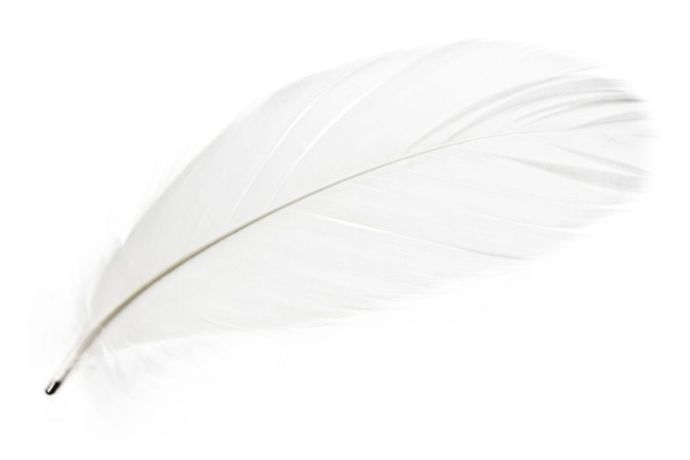 https://res.cloudinary.com/clippings/image/upload/t_big/dpr_auto,f_auto,w_auto/v2/products/magic-magnetic-feathers-set-white-mineheart-clippings-1346451.jpg