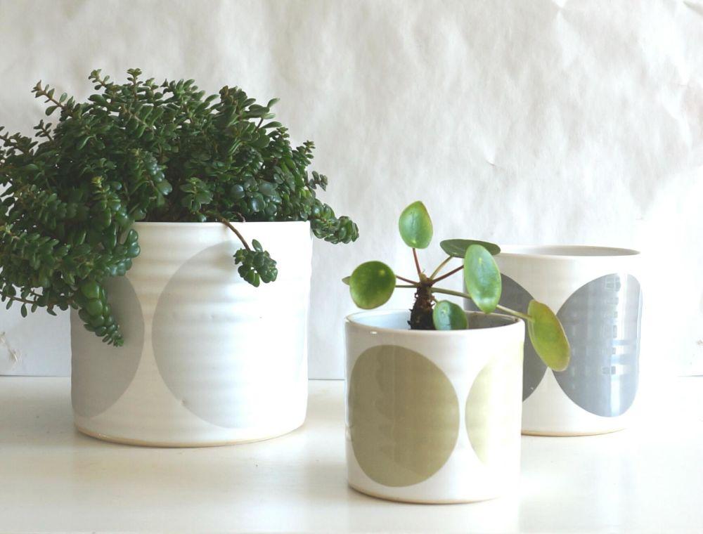 Light Blue, Turquoise, Blue,Camilla Engdahl,Teapots & Cups,flowerpot,houseplant,leaf,plant,vase
