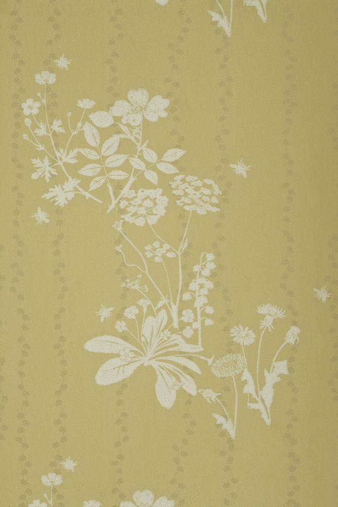 Plaster,Barneby Gates,Wallpapers,beige,botany,pattern,wall,wallpaper