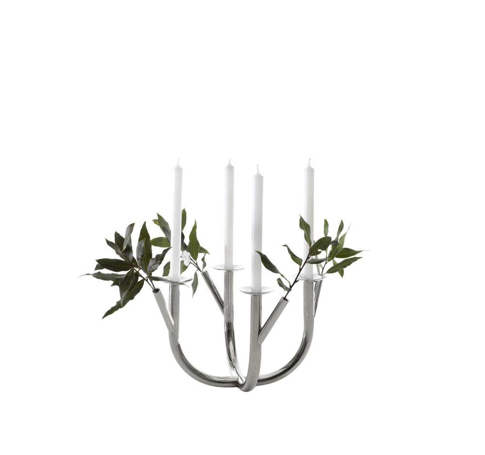 Steel,Driade,Candles & Lanterns,branch,flower,plant