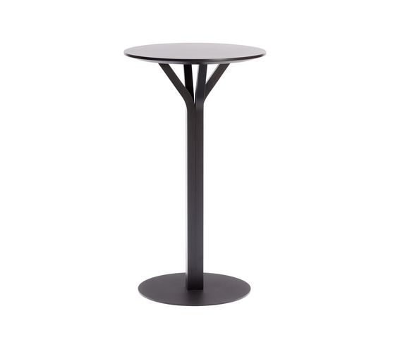 Bloom Table by TON by TON