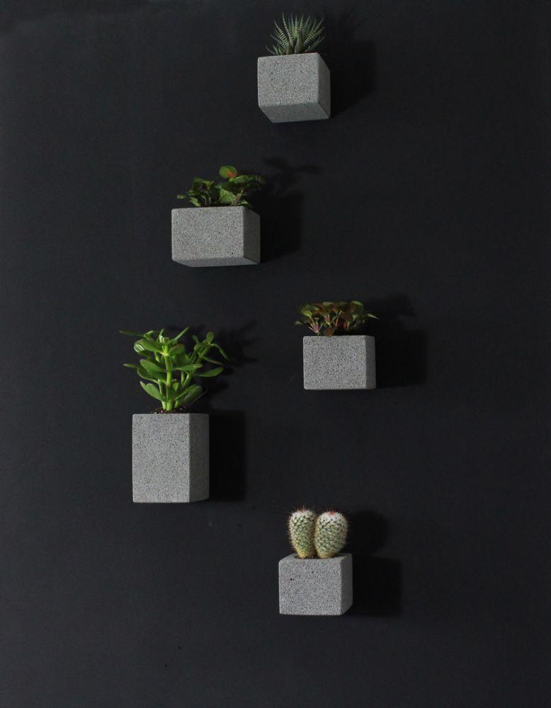 Aera Wall Planters (set of 5) by M Dex Design