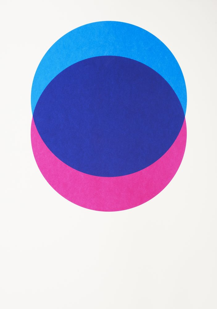 Circles Screen Print by Lane