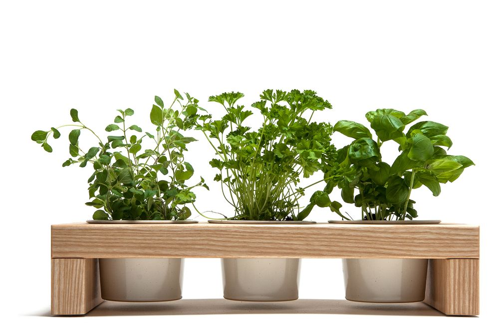 Spiceboard Three Planter by Urbanature