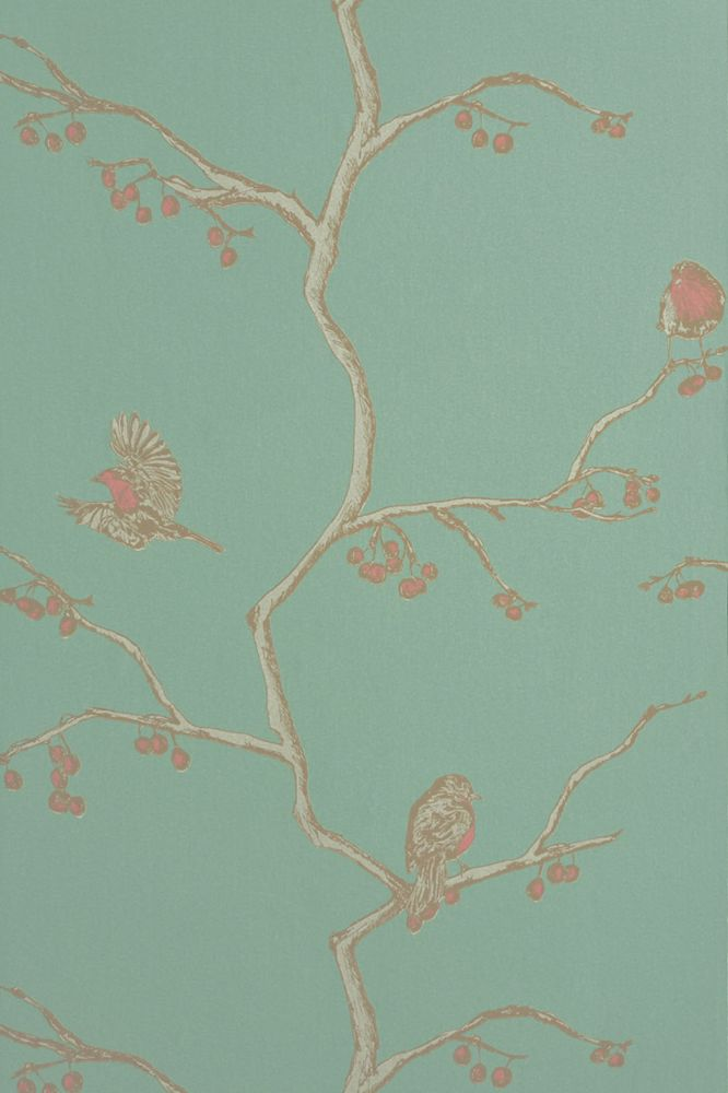 The English Robin Wallpaper  by Barneby Gates