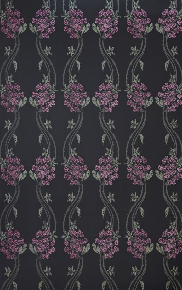 Autumn Berry Wallpaper  by Barneby Gates