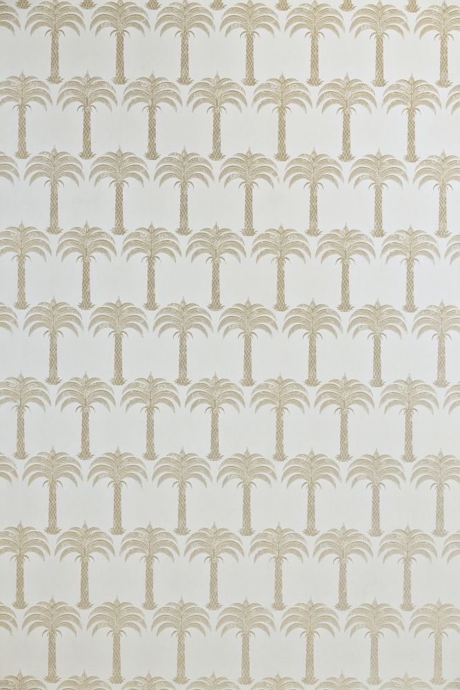 Marrakech Palm Wallpaper  by Barneby Gates
