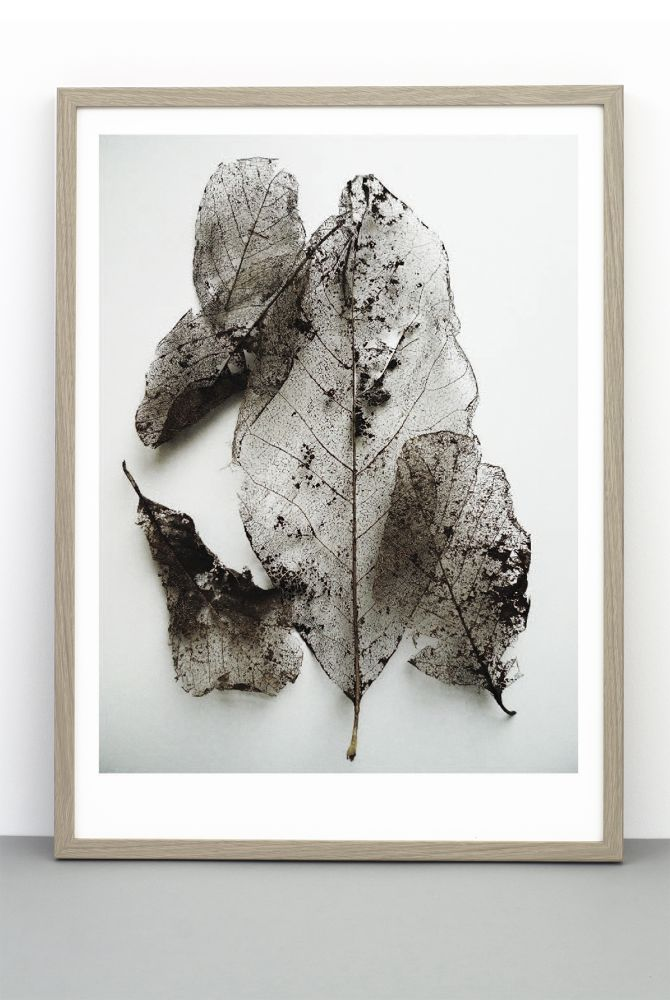 DELICATE LEAVES PRINT by One Must Dash