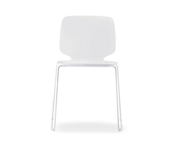 Babila chair in tecnopolymer by PEDRALI by PEDRALI
