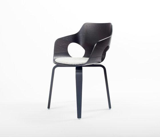 Curved Oak Chair by dutchglobe by dutchglobe