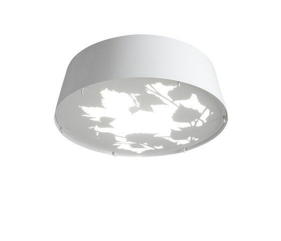 Glänta Mini ceiling by Blond Belysning by Blond Belysning