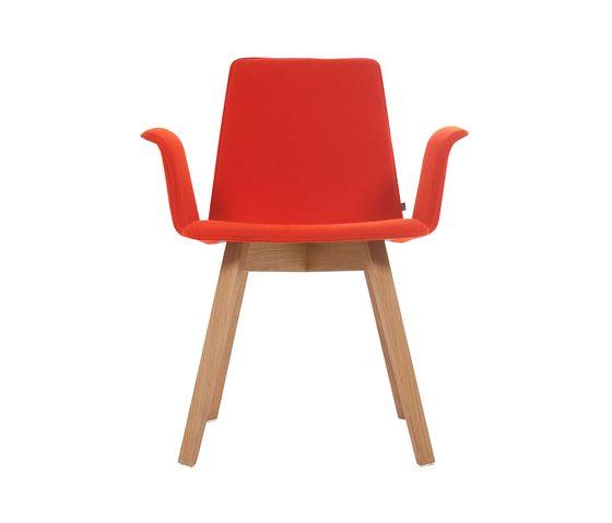 Maverick Armchair by KFF by KFF
