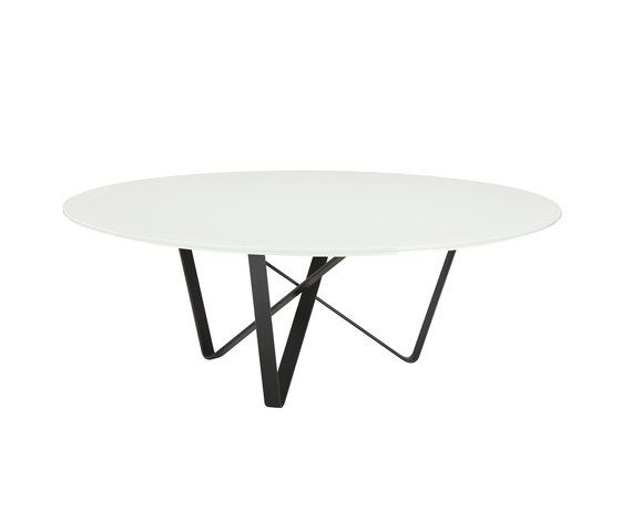 Narcissus Coffee Table by Koleksiyon Furniture by Koleksiyon Furniture