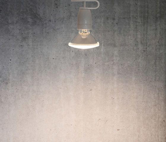 Spotzki by Lichtlauf by Lichtlauf