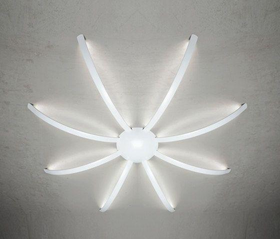 Surfin' ceiling & wall - spider 8 arms by Millelumen by Millelumen