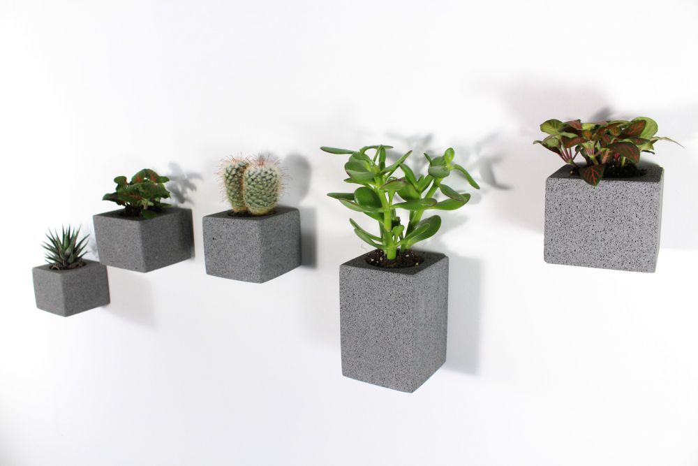 Aera Wall Planters Set Of 5 By Miles Dexter For M Dex Design