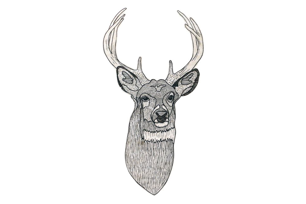 Animal Illustration Deer in the Wood by Splinter Designs