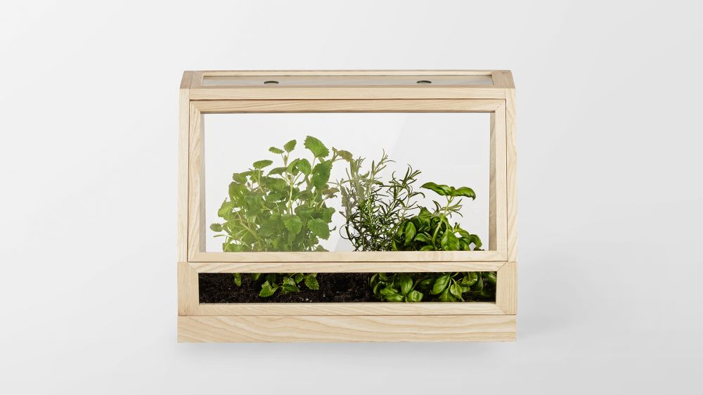 Greenhouse Mini by Design House Stockholm