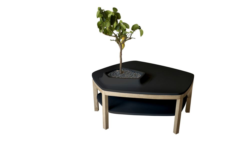 Volcane Pieds Coffee Table by Bellila