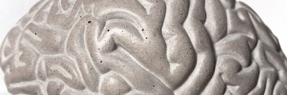 Concrete Gray Matters Book Ends - Set of 2 by Lyon Beton