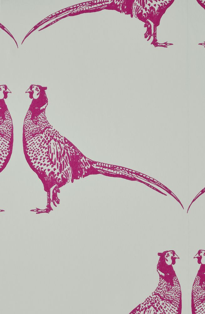 Pheasant Wallpaper  by Barneby Gates