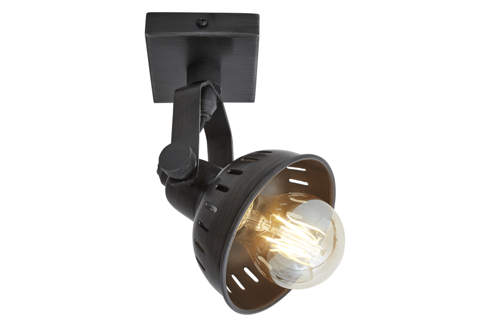 Swivel Spotlight Flush Mount - Single - Pewter by INDUSTVILLE