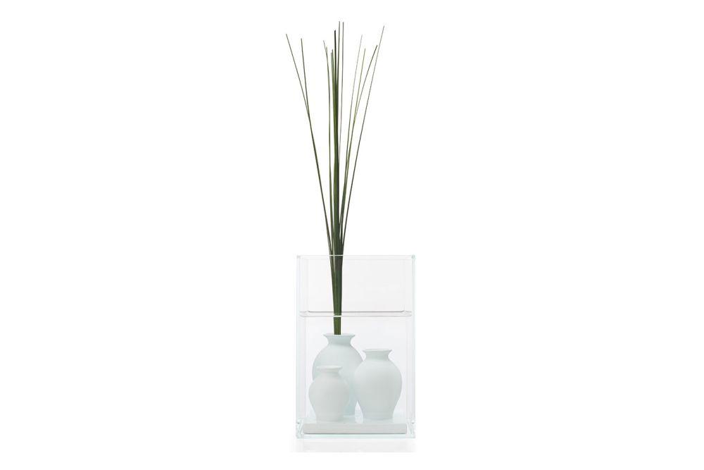 Atlantis Vase by Cappellini