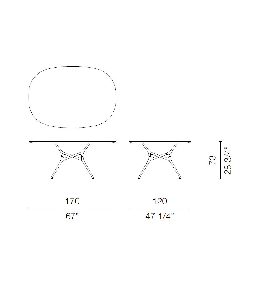 Branch Oval Table by Cappellini